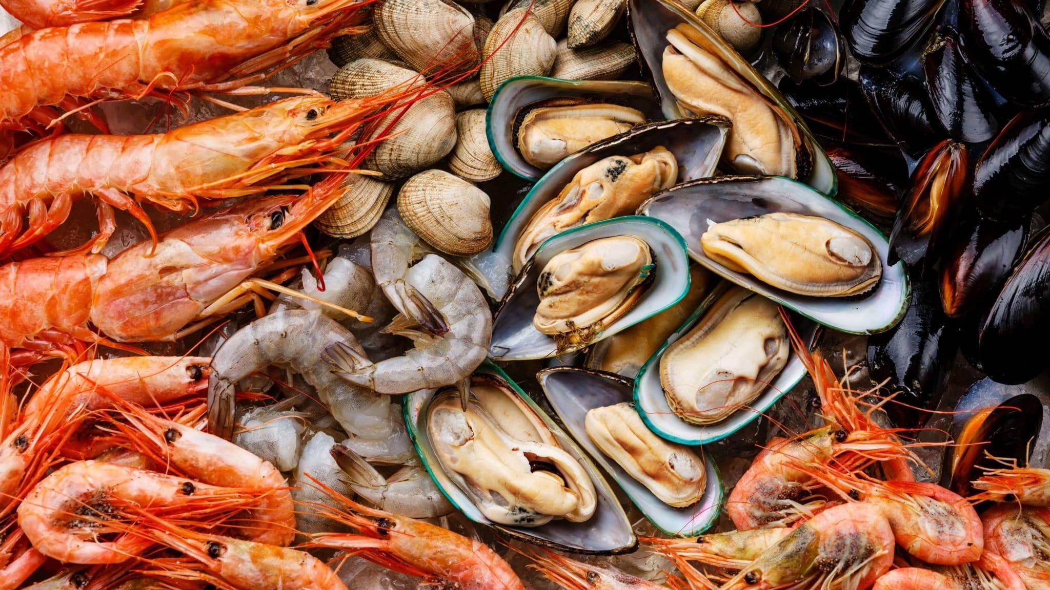 eksport owoców morza