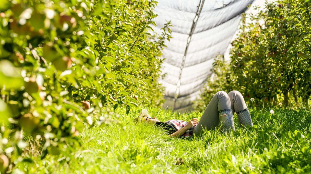 odpoczywający rolnik